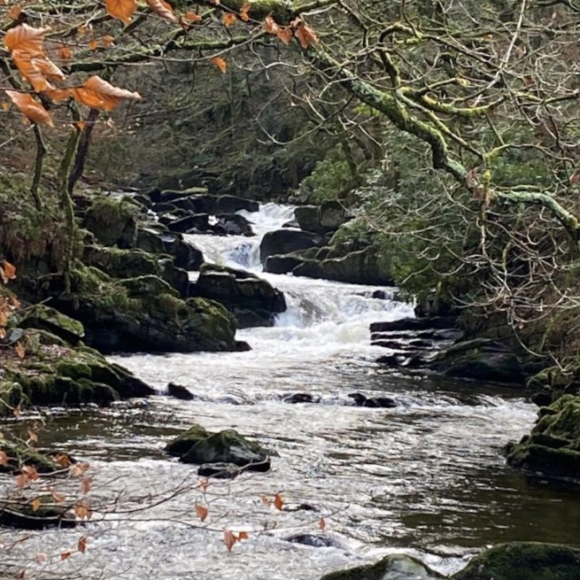 The East Lyn - Exmoor