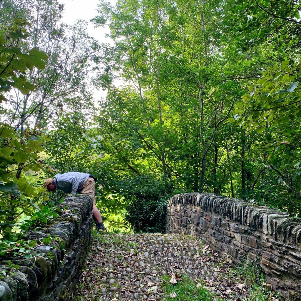 The East Lyn - Primrose Cottage Exmoor